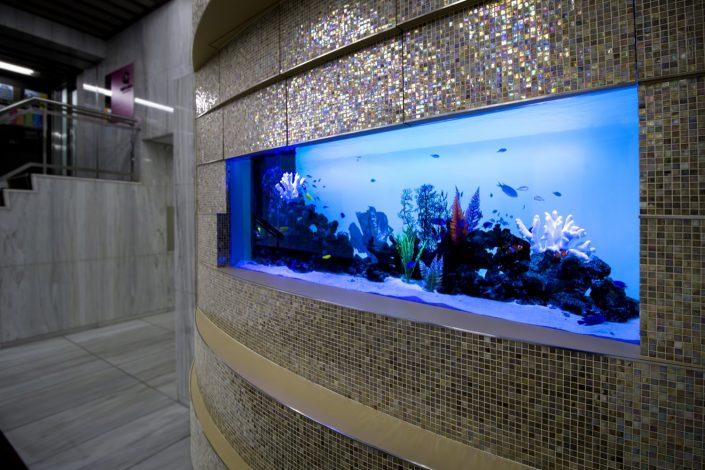 壁面埋め込み型水槽